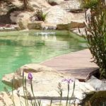 Piscine naturelle : baignade écologique, oui mais à quel prix?